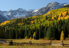Fall in the Rockies Stock Image