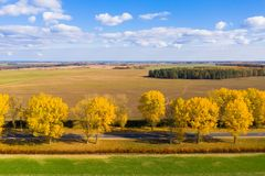 Fall rural landscape. Fall background. Autumn on meadow with blue clear sky. Travel background stock image