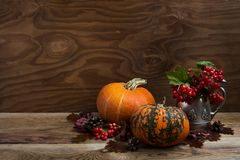 Fall rustic decor with red berry in silver kettle, copy space stock photography