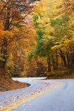 Fall S Curve royalty free stock photo