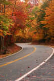 Fall S Curve stock images