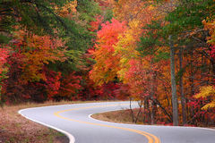 Fall S-curves Stock Image