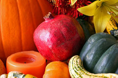 Fall's Harvest. Fruits, vegetables, flowers and gourds native to Fall stock photos