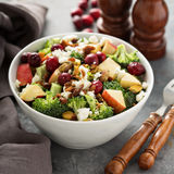 Fall salad with apple and cranberry Stock Photos