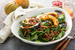Fall salad with greens and acorn squash. Fall salad with greens, nuts, pomegranate seeds and roasted acorn squash Royalty Free Stock Images