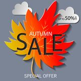 Fall sale background design with colorful paper cut autumn leaves. Vector illustration. EPS10 Royalty Free Stock Photo