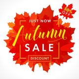 Bright banner for autumn sale with text 50% off just now in frame from red maple leaves. Fall sale background, special offer for promotion poster or flyer design Vector Illustration