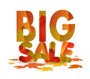 Fall sale design. Autumn discount for advertising, banners or posters. Big sale isolated on white background.  Royalty Free Stock Image