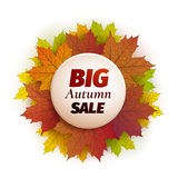 Fall sale design. Autumn discount. Vector fall leaves. Vector fall sale poster illustration with colorful autumn leaves Royalty Free Stock Images