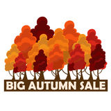 Fall sale design. Big autumn sale. Vector illustration with colorful autumn trees Royalty Free Stock Image