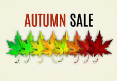 Fall sale design. Stock Photo