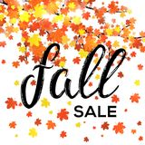 Fall sale design. Seasonal discount autumn poster Stock Photography