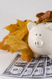Fall Savings with piggy bank Royalty Free Stock Photography