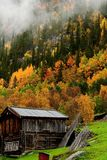 Fall in the scandinavian mountains Stock Images