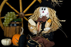 Fall Scarecrow Royalty Free Stock Image