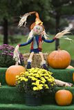 Fall Scarecrow Stock Photo