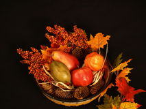 Fall scene. Fall cenerpiece with foliage and fruit shown on a black background Royalty Free Stock Photo