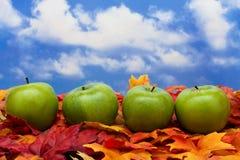 Fall Scene stock photography