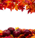 Fall Scene Royalty Free Stock Image