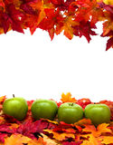 Fall Scene Royalty Free Stock Photography