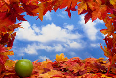 Fall Scene royalty free stock images