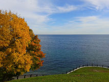 A fall scene with blue lake, yellow trees and green grass. An autumn scene featuring blue lake water, trees with yellow leaves, and green grass Royalty Free Stock Images