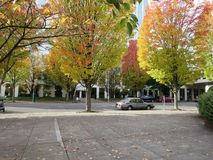 Fall scene. Colorful trees of fall in downtown portland in front of lloyd centre mall Royalty Free Stock Image