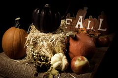 Fall Scene. With harvested vegetables and fruits Royalty Free Stock Photo