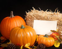 Fall scene with pumpkins on a black background. Three different size pumpkins, apples,pine cones and a bale of hay along with a blank messgae card   make this a Stock Photography
