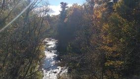 Fall Scene stock photos