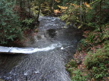 Fall scene in Whatcom Falls Park Royalty Free Stock Image