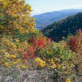 Fall scenery. Fall colors in a  Mountain Ran Stock Photo