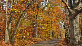 Fall Scenic Byway in Bucks County, Pennsylvania Stock Photo