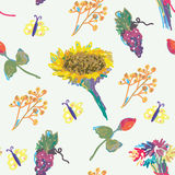 Fall seamless pattern with flower and fruits Stock Image
