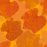 Fall seamless pattern Royalty Free Stock Images