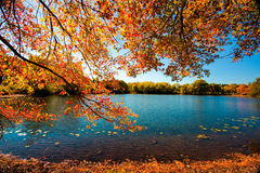Fall Season. View of a lake surrounded by trees in the fall season Stock Photography