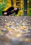 Fall season Stock Photos
