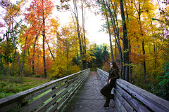 Fall season. Pretty girl posing on the bridge during fall season Royalty Free Stock Photos