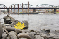 Fall Season Along Portland Willamette River by Marina Royalty Free Stock Photo
