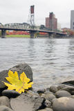 Fall Season Along Willamette River Portland Oregon Stock Photo