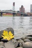 Fall Season Along Willamette River Portland Oregon stock photo
