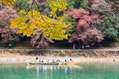 Fall Season Arashiyama Kyoto Japan. Arashiyama is Kyoto`s very popular tourist destination in Japan. People are coming from all over the world Stock Images