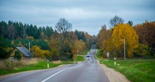 Fall season, asphalt road stock photo