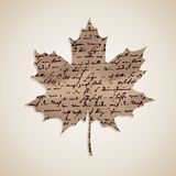 Fall season Autumn maple leaf with writings background EPS10 fil Stock Photography