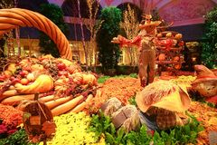 Fall season in Bellagio Hotel Conservatory & Botanical Gardens Stock Photos