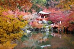 Fall season in Japan Royalty Free Stock Images
