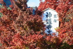 Fall season of Jingo-ji, kyoto, Japan Stock Image