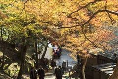 Fall season of Jingo-ji, kyoto, Japan Royalty Free Stock Photos