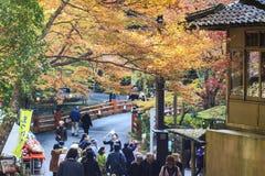 Fall season of Jingo-ji, kyoto, Japan Royalty Free Stock Images