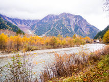Fall season of kamikochi, Japan Royalty Free Stock Photo
